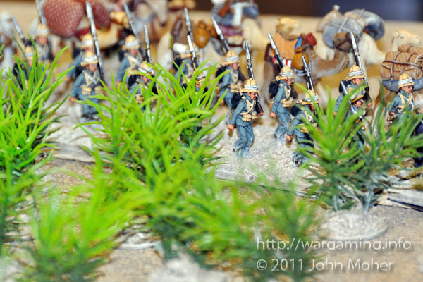 Anglo-Egyptian forces march past an 'Aquarium Thorn Thicket'.