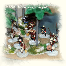 Dervish Infantry at the Watering Hole